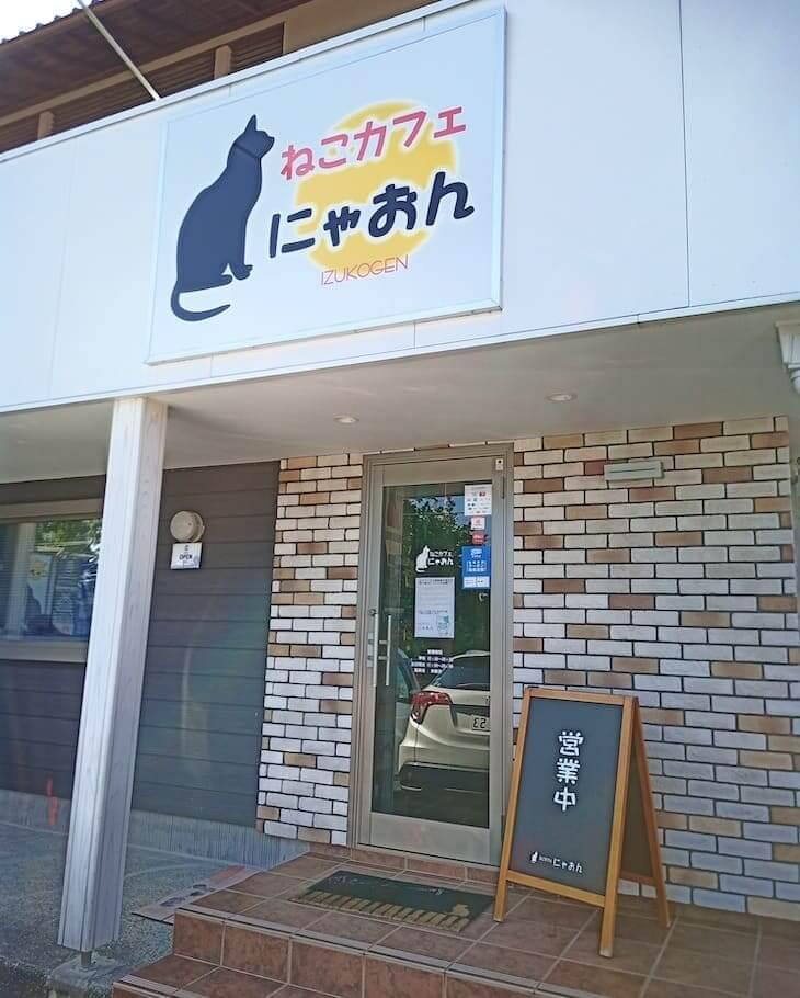 伊豆の保護猫カフェ にゃおん